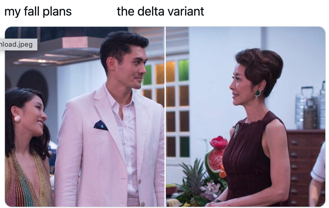 My Fall Plans / / The Delta Variant